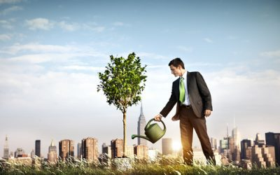 5 Ways Companies Can Reduce Their Environmental Footprint